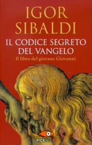 Il Codice Segreto del Vangelo Book Cover